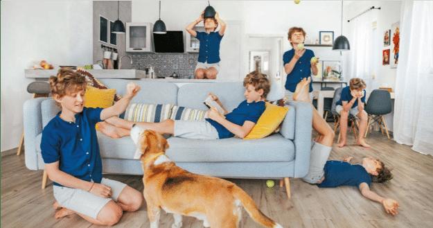 Imagen que contiene perro, interior, persona, tabla  Descripción generada automáticamente
